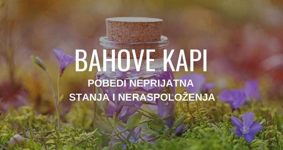 BAHOVE KAPI